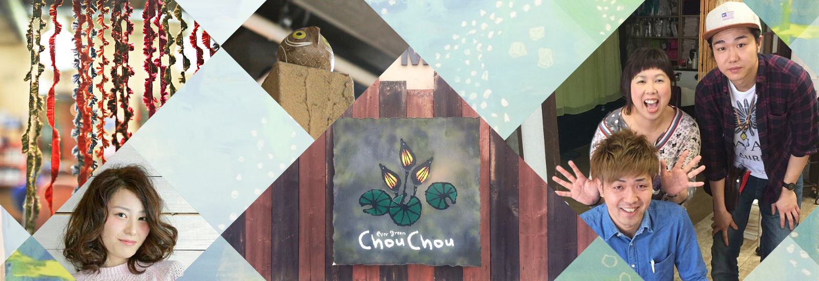 evergreen ChouChou